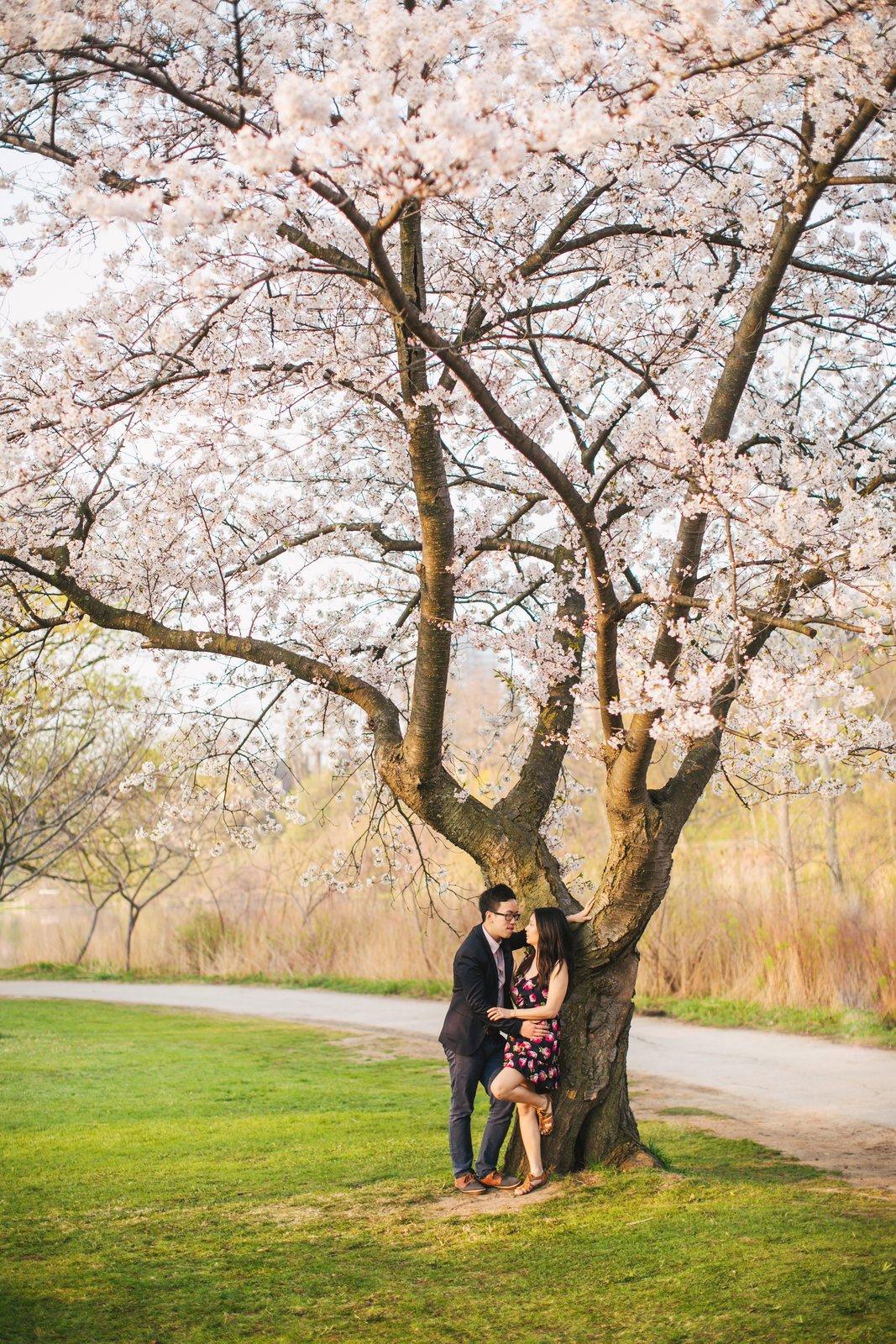 Jessica-Charles-Engagement-High-Park-Cherry-Blossom-012